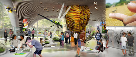 (left) Rendering shows visitors viewing larger-than-life insect models as well as live specimens. (right top) Cricket sits on the tip of a finger.