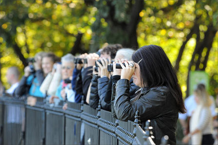 A group of birders stand in a row, resting their elbows on a fence and hold binoculars up to their eyes.