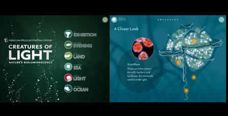 Creatures of Light mobile app