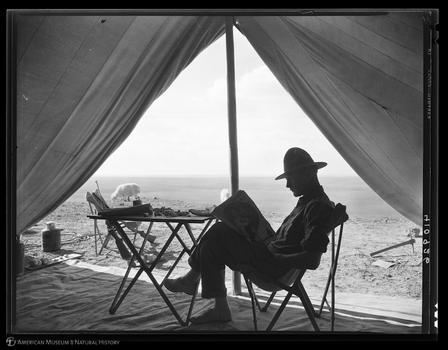 Roy Chapman Andrews at an elephant camp in the Tunggur tableland region in 1928. ©AMNH/410926 Digital Special Collections