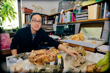 Z. Jack Tseng, a National Science Foundation and Frick Postdoctoral Fellow in the Museum's Division of Paleontology is the study co-author.  ©AMNH/D.Finnin