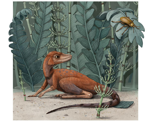 Life restoration of Kongonaphon kely, a newly described reptile near the ancestry of dinosaurs and pterosaurs, in what would have been its natural environment in the Triassic (~237 million years ago). © Alex Boersma
