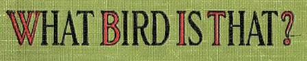 "A cloth book cover reads: ""What bird is that?"""