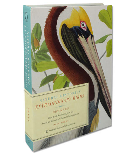 Extraordinary Birds: selections from the AMNH rare book collection