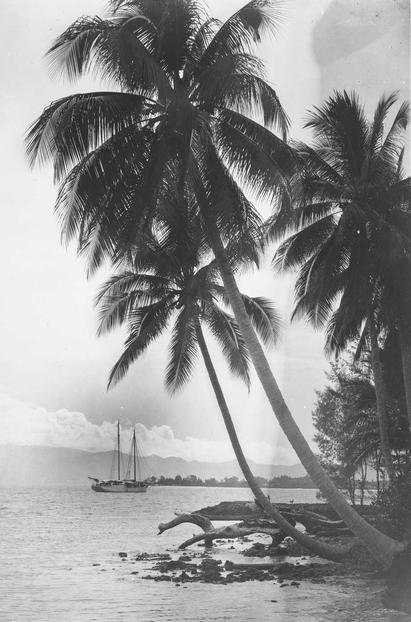 France Whitney South Sea Expedition