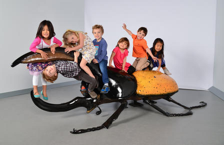 The climbable Hercules Beetle should be a hit with young visitors.  ©AMNH/D.Finnin