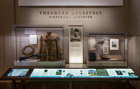"Display case titled ""Theodore Roosevelt Firsthand Observer,"" containing jacket, camera, rifle, bird, and other artifacts with photos and text"