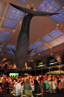 AMNH Environmental Lecture and Luncheon