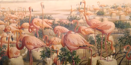 Birding Artists Video Flamingoes