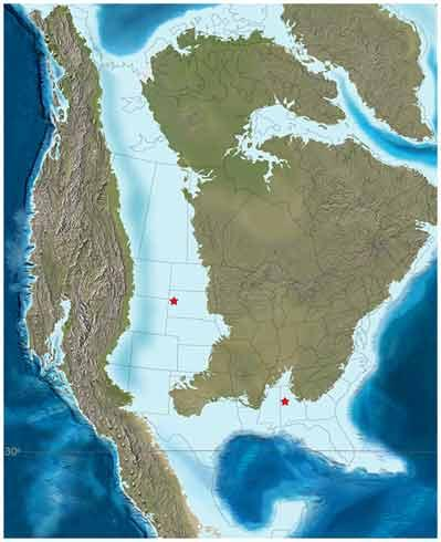 This paleomap of North America from 85 million years ago shows the fossil localities (red stars) in South Dakota and Alabama.