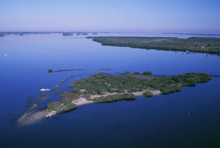 Pelican Island NWR, in the Intercoastal Waterway.