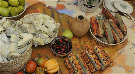 From top left, chayote, tamales, squash, chile peppers, and maize (or corn), in the Aztec market diorama in Our Global Kitchen: Food, Nature, Culture.  © AMNH/R. Mickens