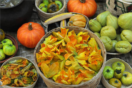 Green tomatoes and squash blossoms. © AMNH/R. Mickens