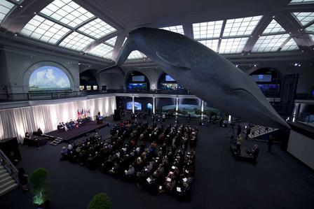 Students, faculty, and families gathered under the blue whale in the Milstein Hall of Ocean Life for the 2014 commencement ceremony. ©AMNH/M.Shanley