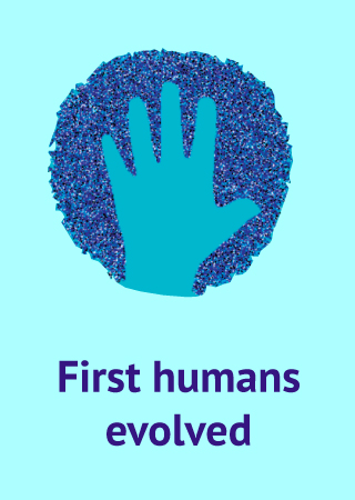 human hand icon with text First humans evolved