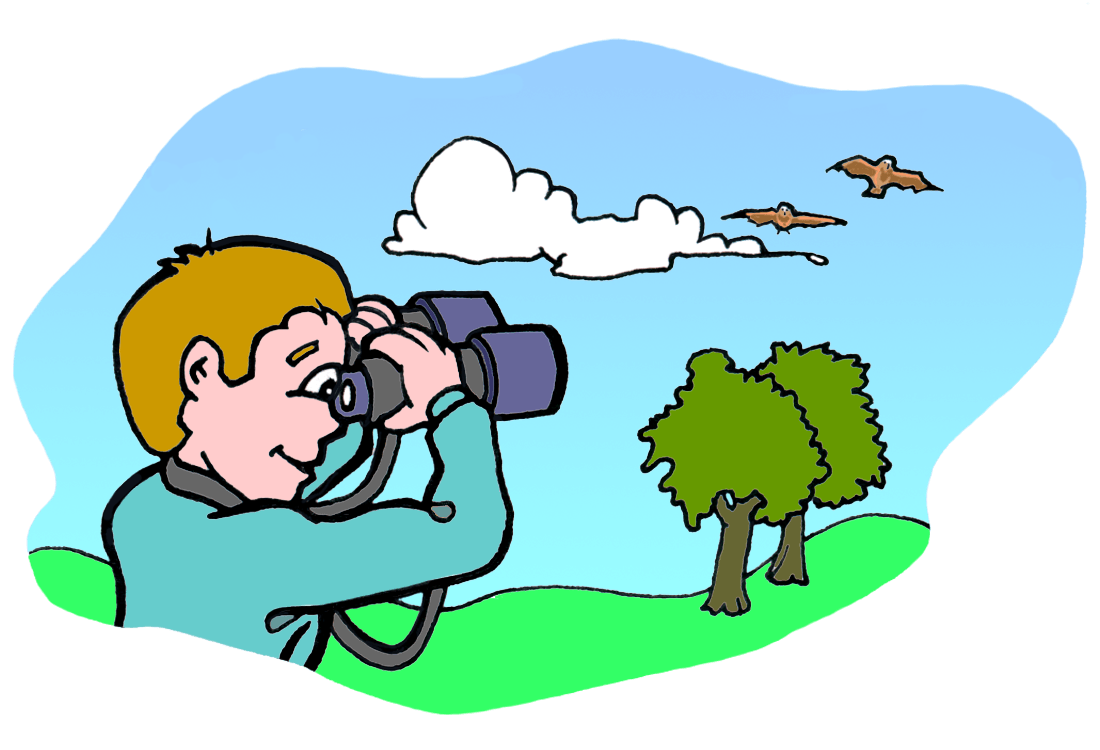 drawing of a boy looking through binoculars at two birds flying above two trees in a field.