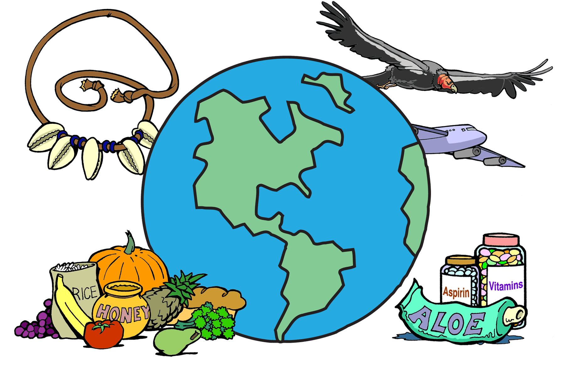 drawing of earth, surrounded by medicine, a cowry shell necklace, a condor, an airplane, and a pile of rice, bread, honey, fruits and vegetables.