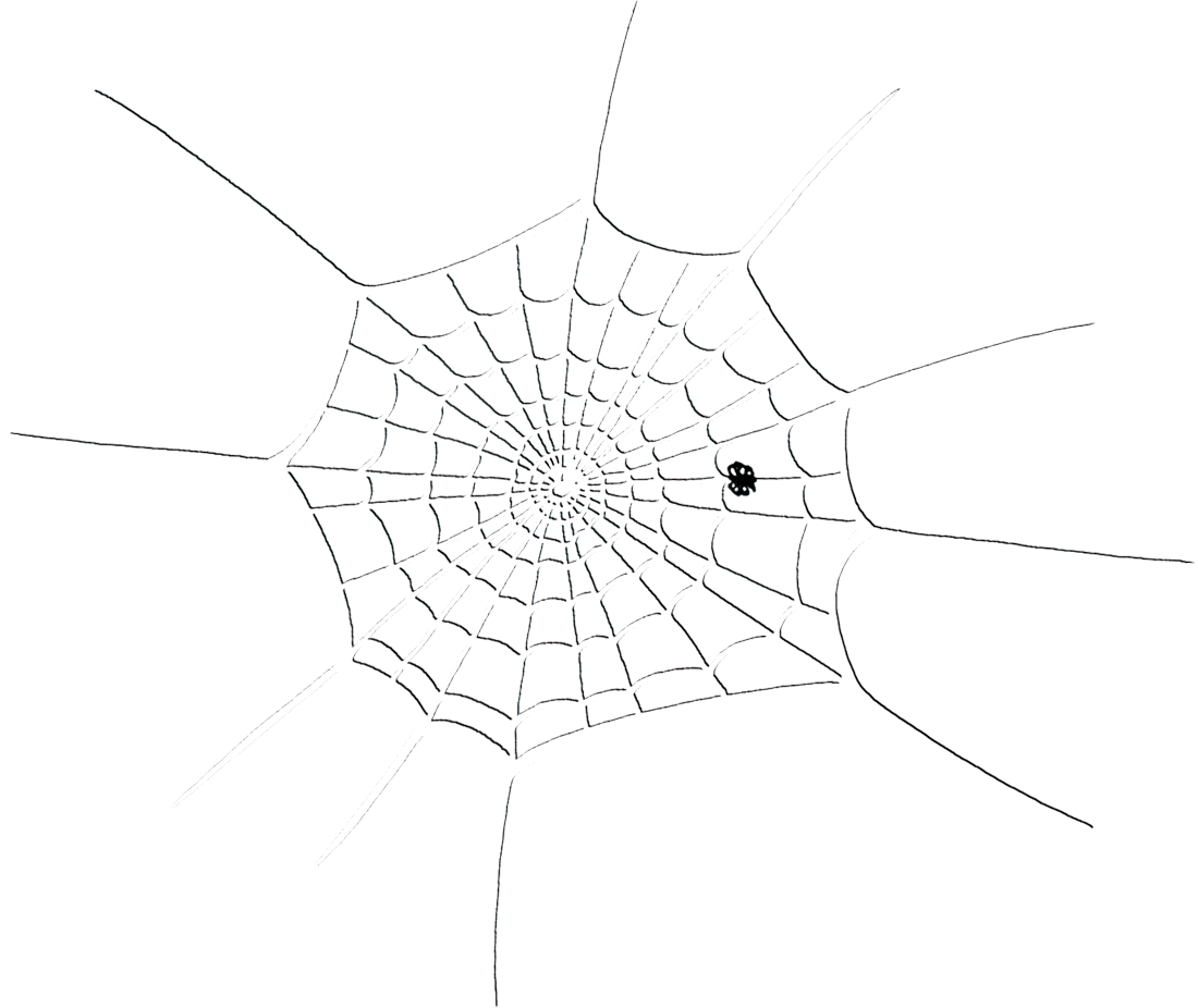 drawing of a web with a small spider near the bottom of it.