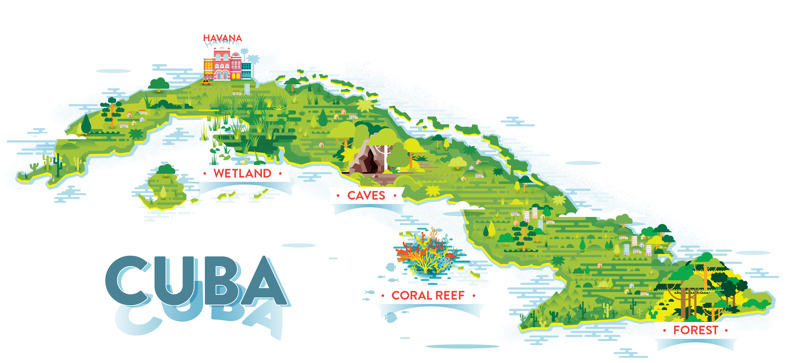 Cuban Wildlife Matching Game OLogy Science For Kids - Where is cuba on a map