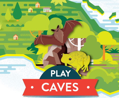 Play Caves