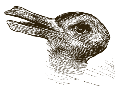 Drawing which could be interpreted as a duck head or a rabbit's head.