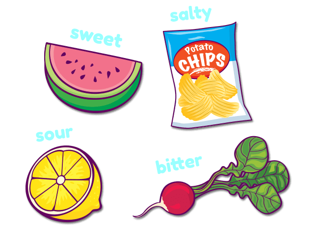 sweet watermelon, salty chips, sour lemon, bitter radish