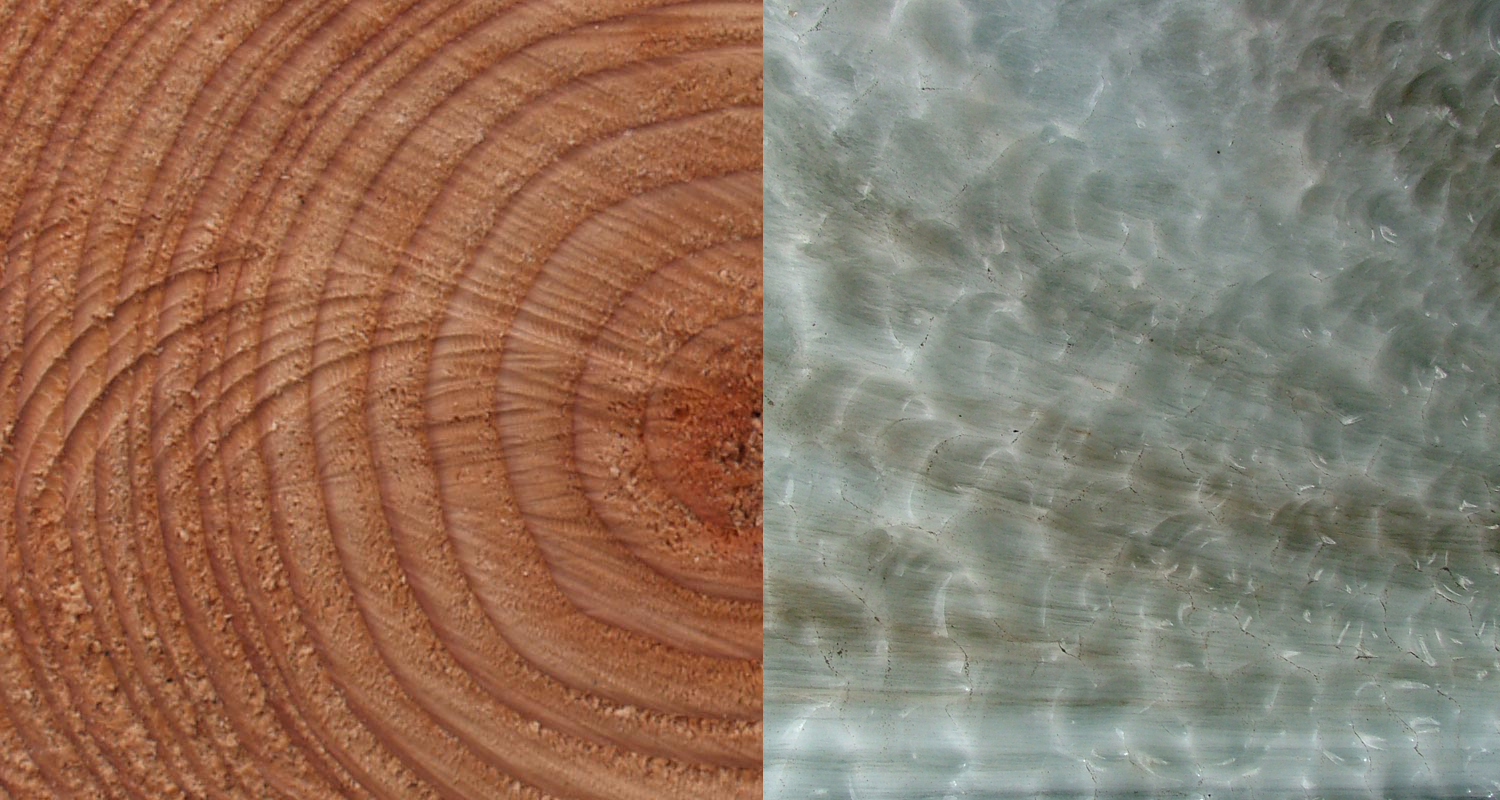 Composite image showing tree rings and layers of a glacier