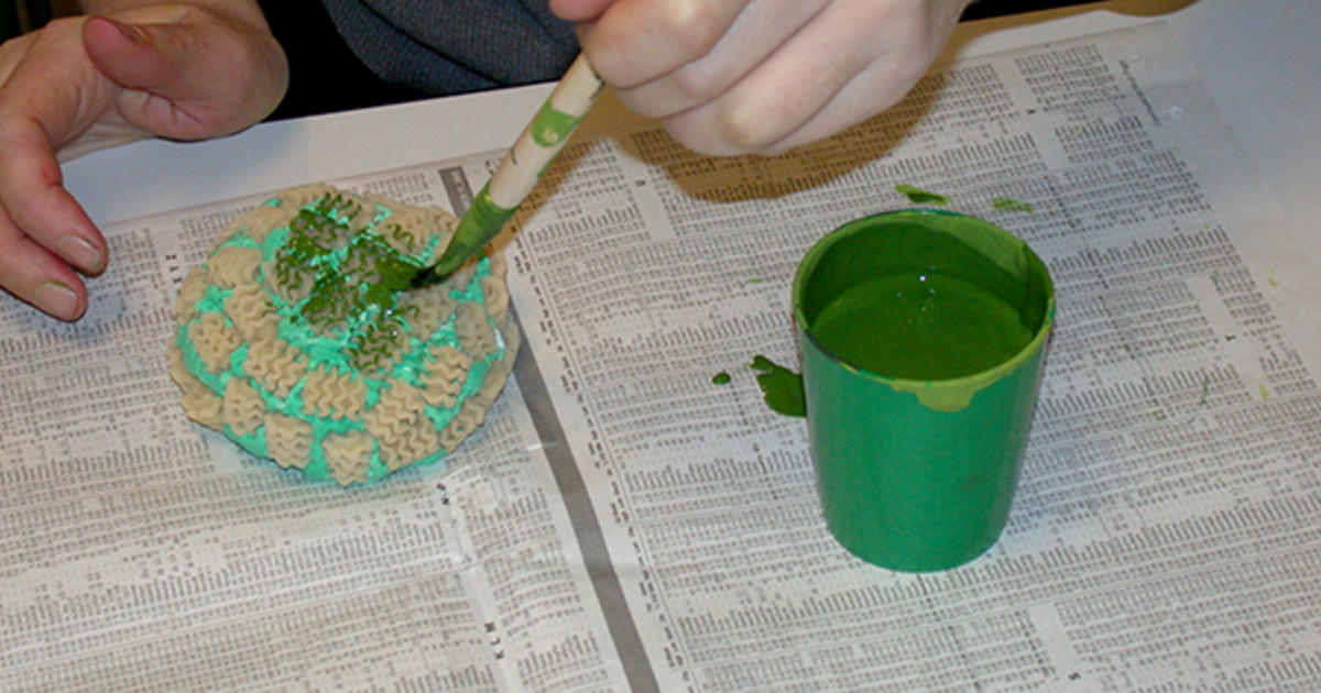 Create a Coral Reef: Instructions | AMNH