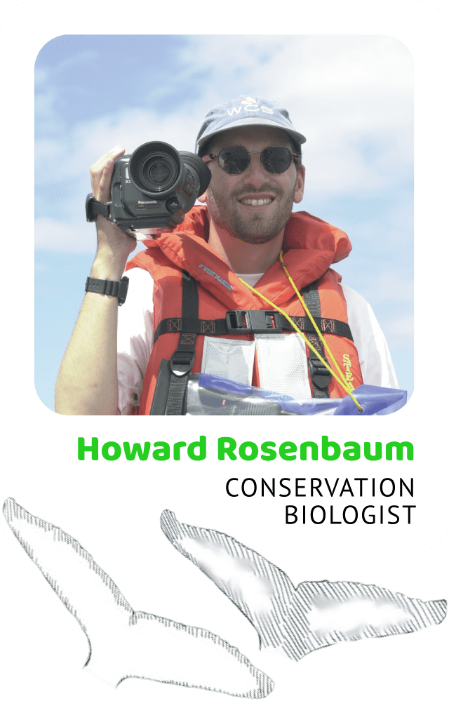 Photo of Howard Rosenbaum, Conservation Biologist and a drawing of a humpback flukes