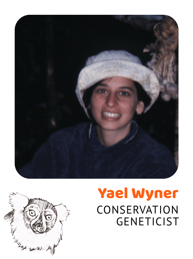 Photo of Yael Wyner, Conservation Geneticist and drawing of a ruffed lemur
