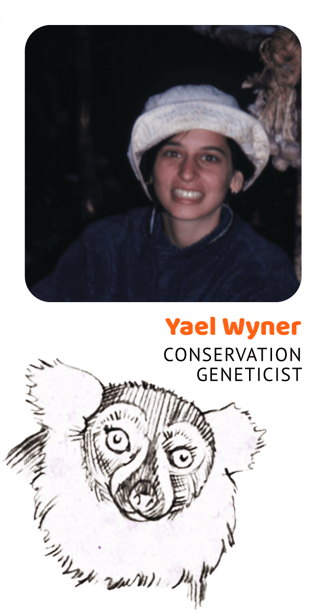 Photo of Yael Wyner, Conservation Geneticist and a drawing of a ruffed lemur