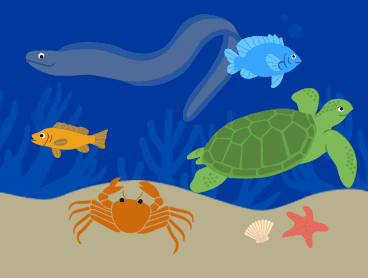 various sea creatures among coral.