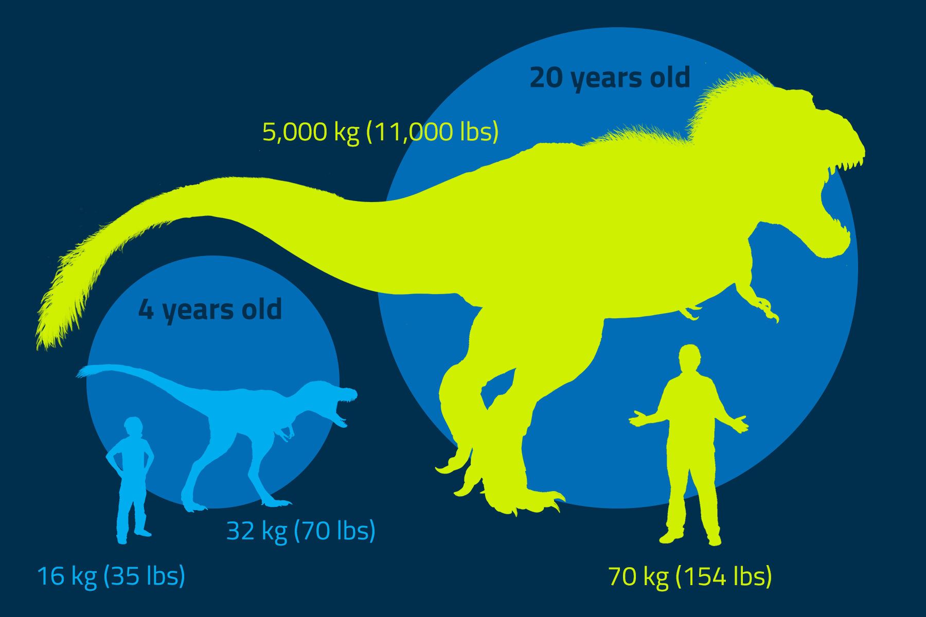 Silhouette of a man beside silhouette of an adult T. rex.