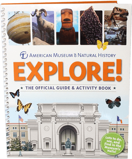 Get Your Own Kids guide to the Museum