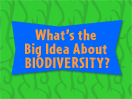 What's the Big Idea About Biodiversity?