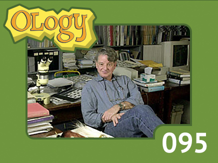 olc_095_joel_cracraft_listing
