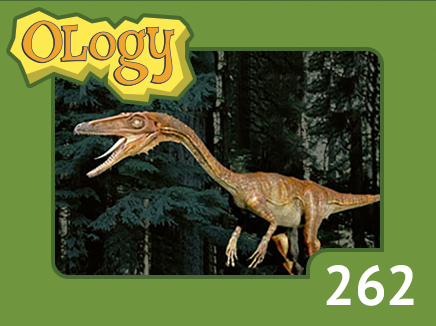 olc_262_triassic_period_listing