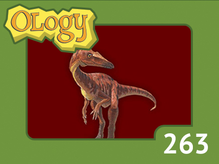 olc_263_coelophysis_listing