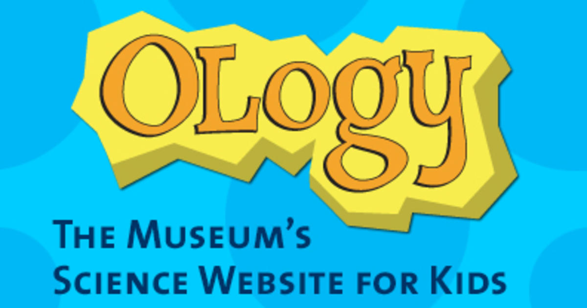 Ology A Science Website For Kids American Museum Of Natural History