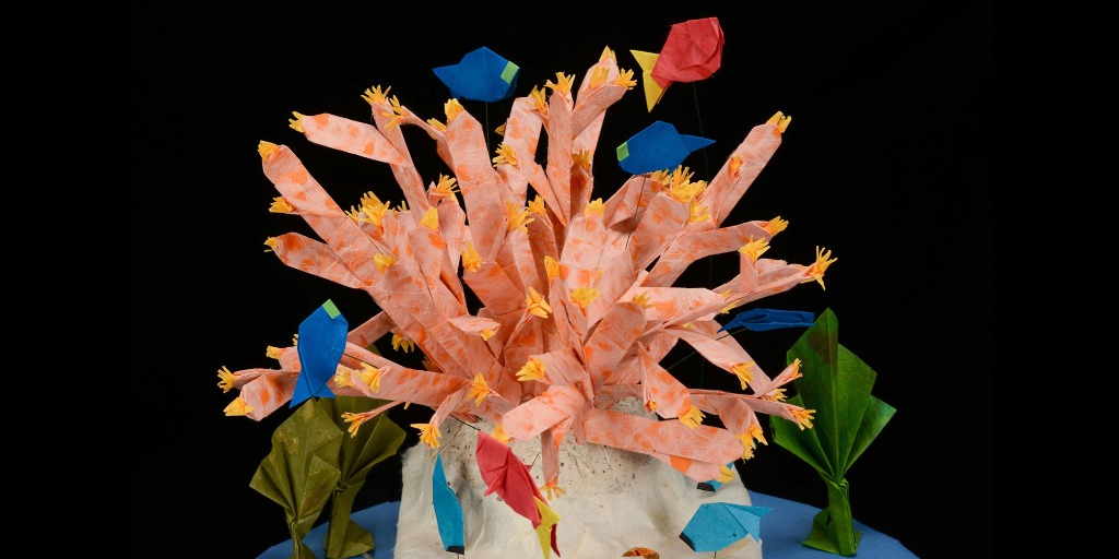 Origami Classes | American Museum of Natural History