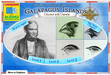 the astounding adaptations of organisms on the galapagos islands Transcript of galapagos finches adaptations survival the distance between the islands meant that the finches on different islands could not interbreed galapagos finches the galapagos finches' response to changing food sources.