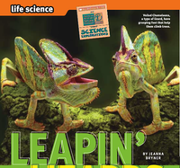leapin-lizards_thumb