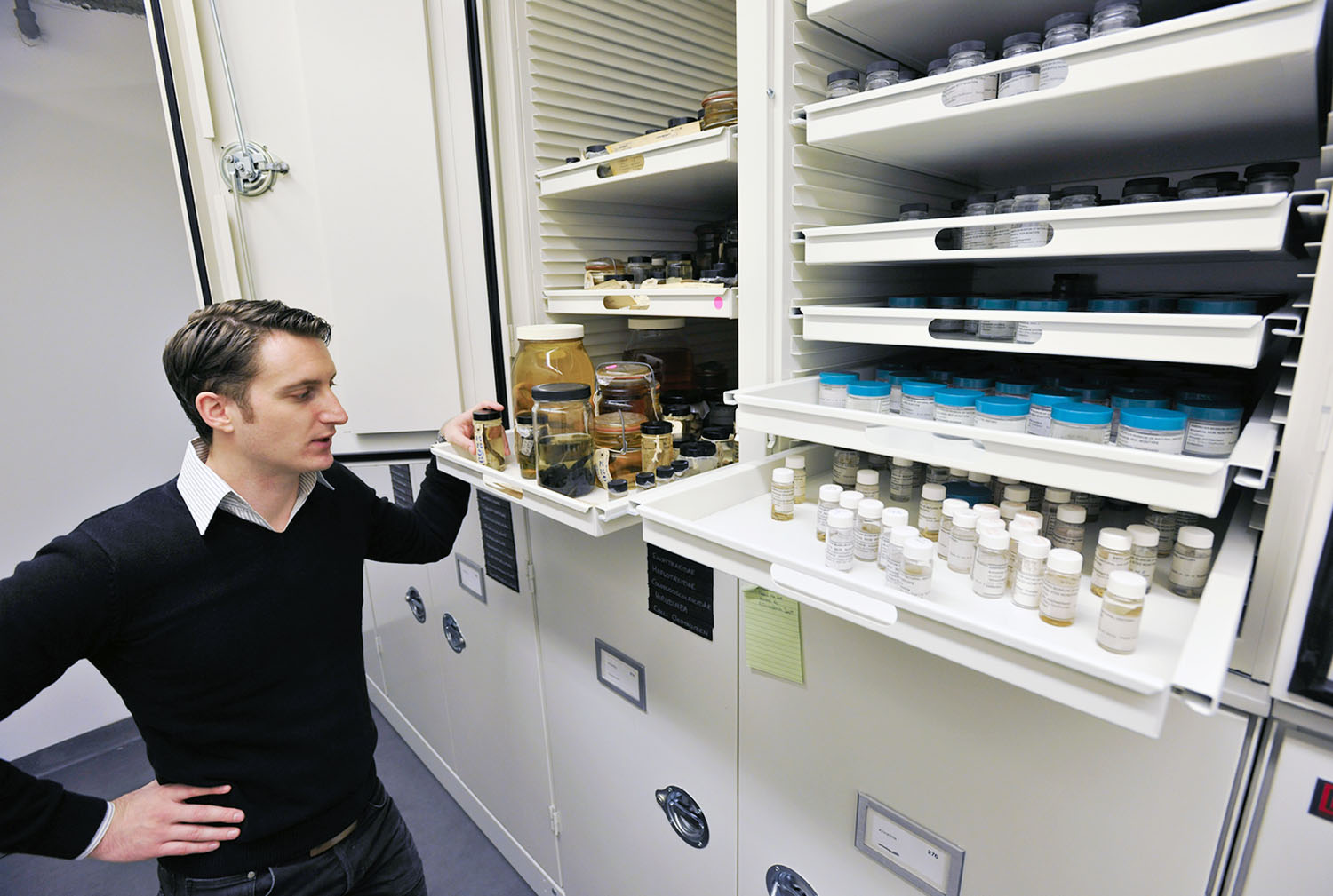 Student stands in front of metal cabinet filled with shelves and pulls out one, inspecting the variously-shaped bottles containing specimens.