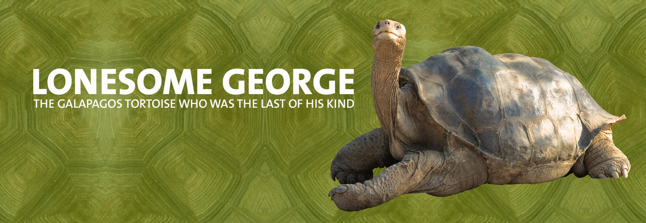 Lonesome George DL