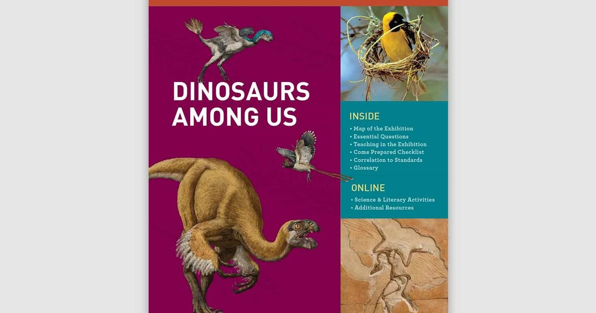 Educator Resources: Dinosaurs Among Us Exhibit | AMNH on mosasaur map, jungle book map, hamster map, jurassic period map, the great movie ride map, raptor map, jurassic world map, plesiosaurus map, drumheller alberta map, mass extinction map, the lego movie map, epic map, crocodilian map, snow day map, bat map, the explorers map, jurassic park map, cretaceous period map, iguanodon map,