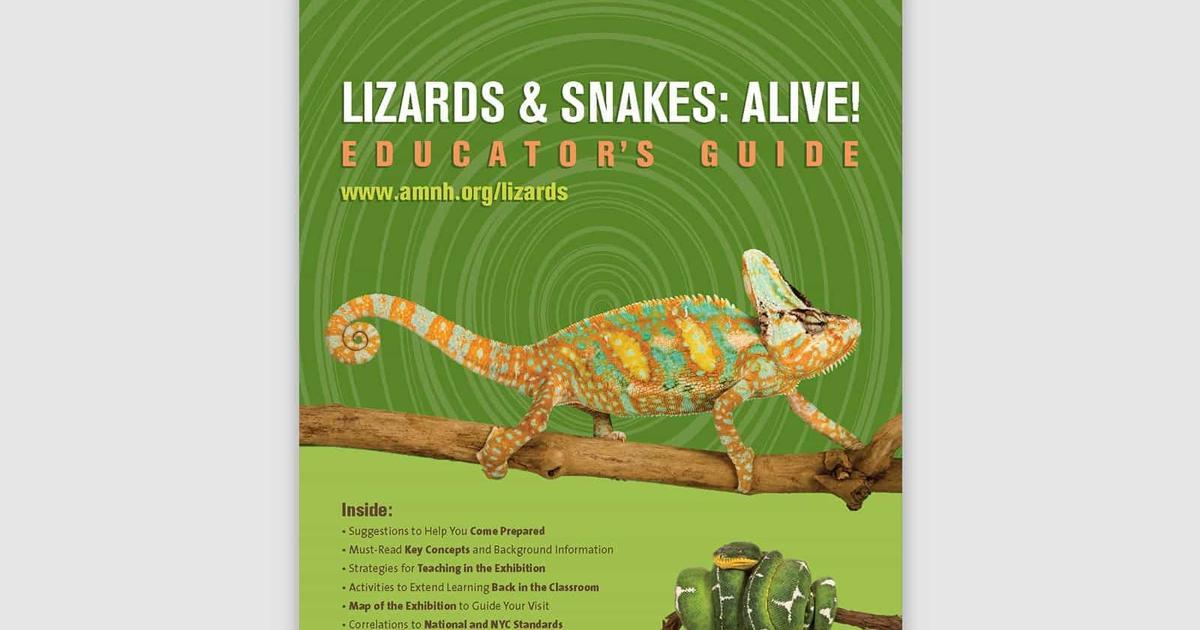 Snakes: Learn to Read With Snakes (Learn to Read With Animals Book 1)