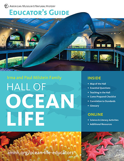 Milstein Hall of Ocean Life Educator's Guide cover