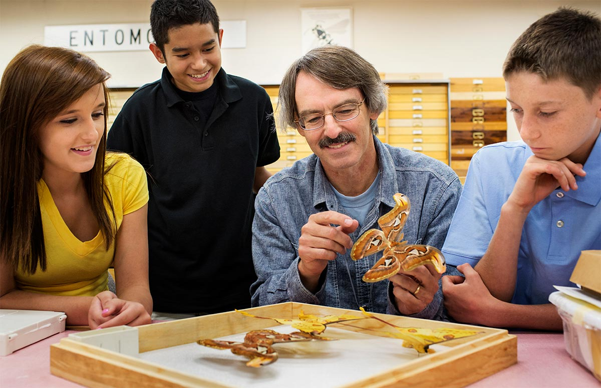 A teacher is showing his students some preserved butterflies in a classroom