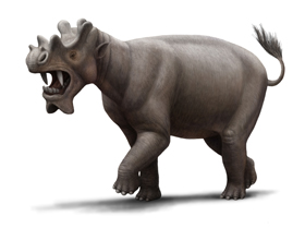 An extinct hoofed mammal the size of a rhinoceros, with dagger-like teeth and three sets of bony growths on its head.