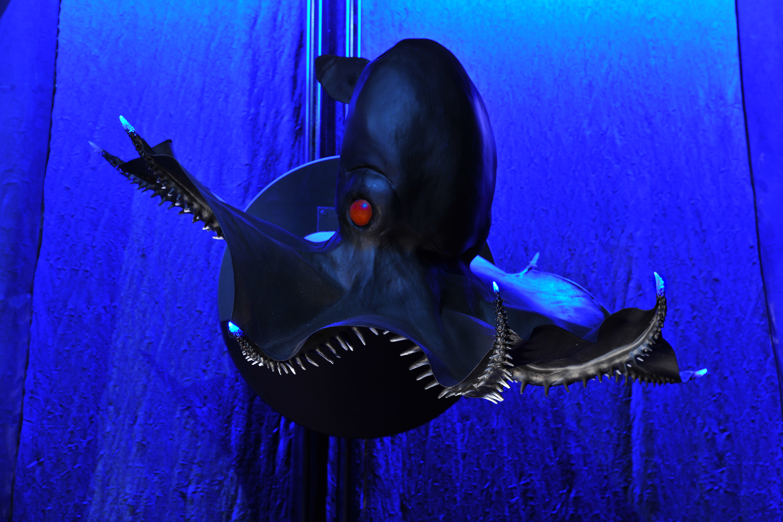 Vampire SquidVampire Squid Glowing